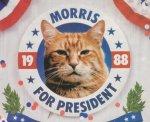 MorrisPrez